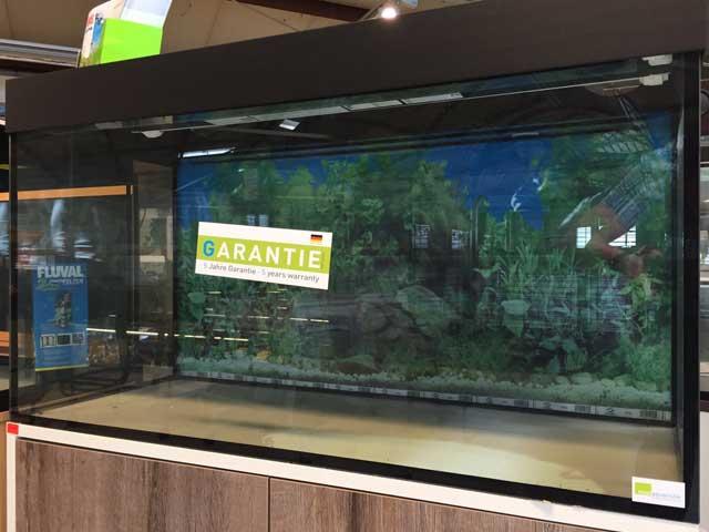 Aquarium-Umzug: Wechsel auf ein neues Becken