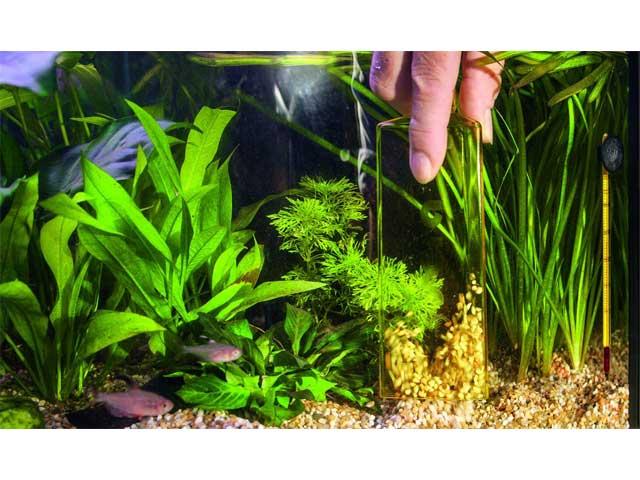 Aquarium Bodenreiniger