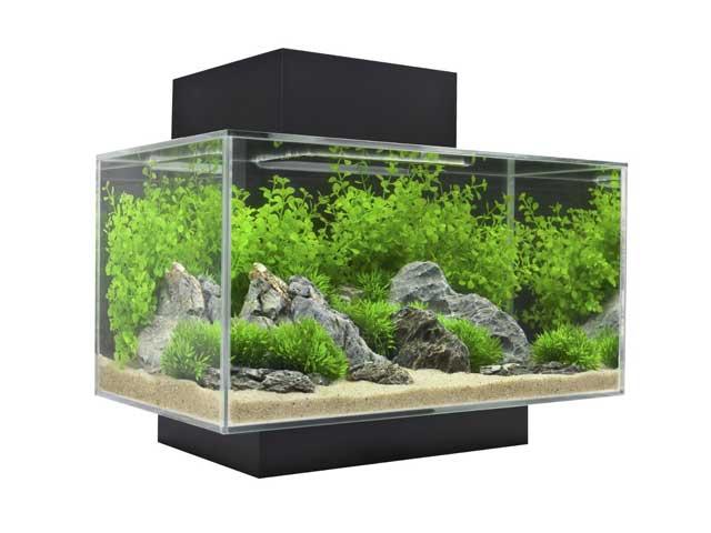 nano aquarium laufende kosten. Black Bedroom Furniture Sets. Home Design Ideas