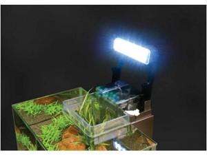 Dluval Edge Test LED Beleuchtung