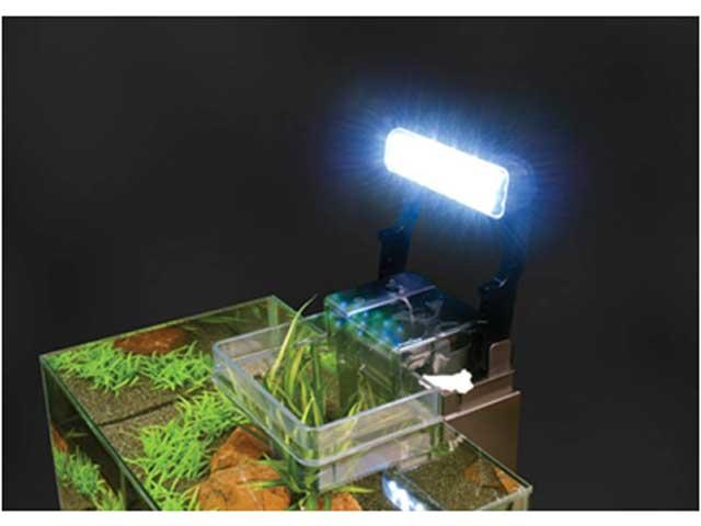 fluval edge i test led beleuchtung aquarium perfekt. Black Bedroom Furniture Sets. Home Design Ideas