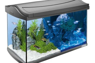 tetra aquaart discovery line led das set im test. Black Bedroom Furniture Sets. Home Design Ideas